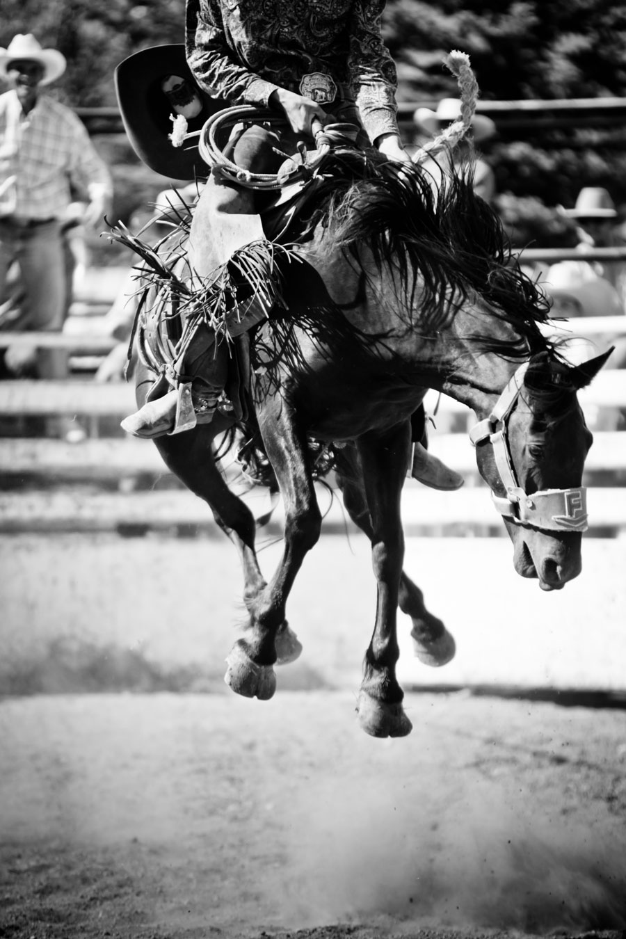 Pincher Creek Rodeo